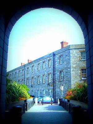griffith halls